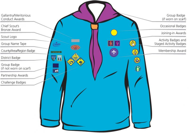 files/24thipswichscoutgroup/site content/beaver uniform badge locations.jpg