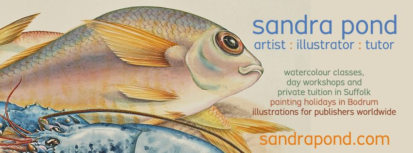 Sandra Pond Art Classes